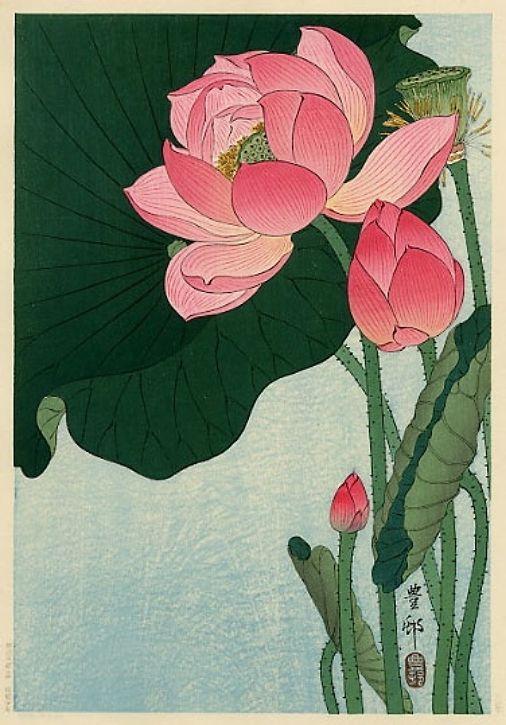 Art on Tuesday: Lotus   Japan Kaleidoskop